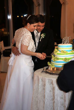 302 - cake_crop